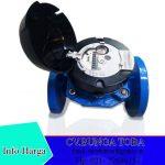 Jual Flowmeter itron 2 Inchi Type woltex
